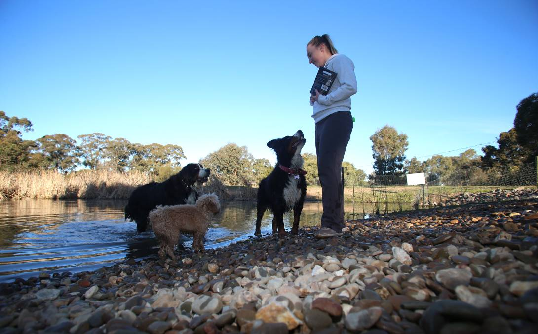 CHANGES: Laura Douglas with Daryl, Marley and Poppy. Harcourt Park in Crook Street has undergone further upgrades since last year. Picture: GLENN DANIELS