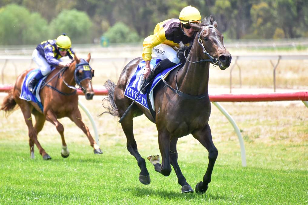 The Rod Symons-trained Luna Chara, ridden by Patrick Moloney, wins the Iron Jack 3YO Maiden Plate at Tatura on Saturday. Picture: BRENDAN McCARTHY/RACING PHOTOS