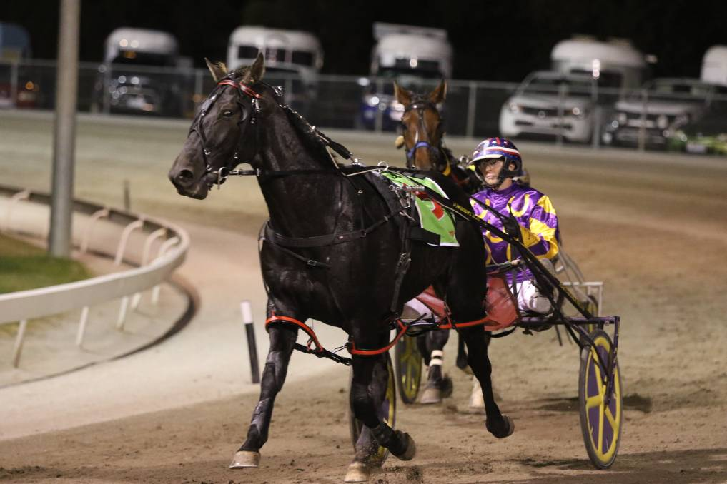 Aladdin and Kerryn Manning have combined to land a second big race feature in as many weekends following success in the $30,000 South Australian Derby at Globe Derby on Saturday night. Picture: CHARLI MASOTTI PHOTOGRAPHY