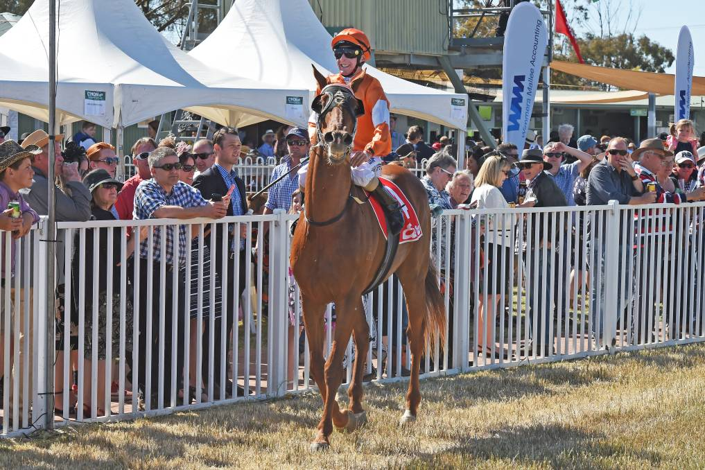 Big crowds flock to Wycheproof Cup day each year. Picture: RACING PHOTOS